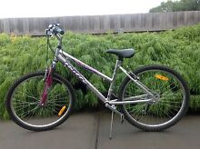 Huffy, Tream Elizabeth Town Meander Valley Preview