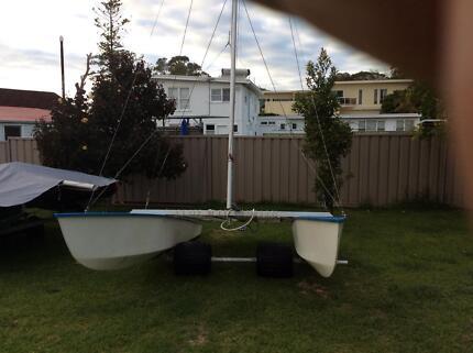 Paper tiger catamarans  2