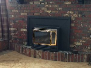 Napoleon Gas Fireplace insert