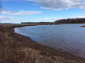 12 Acre Waterfront Property