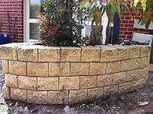 Peter Fudge designed garden with water feature and raised beds Northbridge Willoughby Area Preview