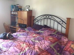 Private furnished room available