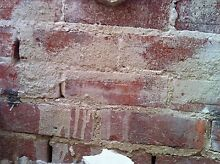 FREE RED HOUSE BRICKS Warradale Marion Area Preview