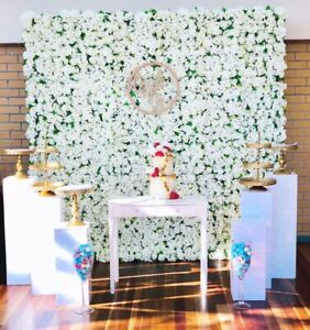 Flower wall and props Arndell Park Blacktown Area Preview