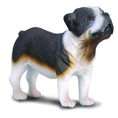 CollectA NEW * Bulldog * 88179 Dog Breyer Figure Toy Replica