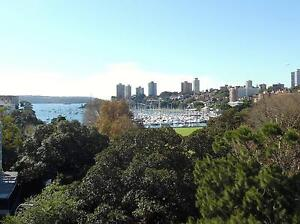 MULTIMILLION DOLLAR HARBOUR VIEWS RUSHCUTTER BAY CYC STRATA TITLE Woolloomooloo Inner Sydney Preview