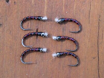 Size 14 6 Red-butt Bomber Chironomid Pupa Flies