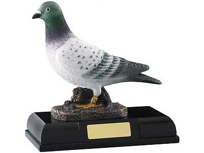 PIGEON  Award Trophy FREE ENGRAVING