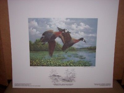 DUCK STAMP & PRINT, FIRST OF NATION COSTA RICA, NEW IN BOX