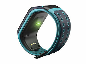 TomTom-Runner-2-Cardio-Built-in-HRM-Multi-Sport-Sky-Scuba-Blue-Large