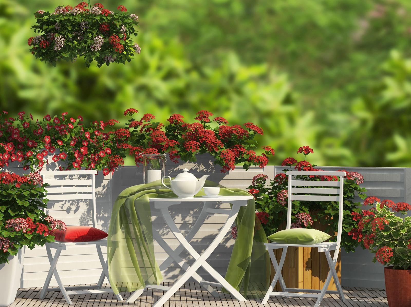 15%-Gutschein für Gartenartikel   eBay