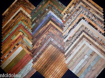 12x12 Scrapbook Paper Studio Dendrology Wood Texture Fixer Upper Remodel Home 60 (12x12 Scrapbook Paper)