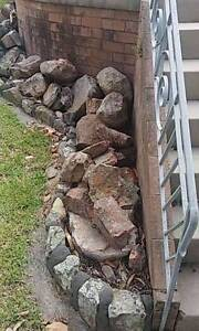 Bush rocks Adamstown Heights Newcastle Area Preview