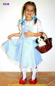 Childrens Fancy Dress Costume Hire - Last Minute Kids Dress Ups Singleton Rockingham Area Preview