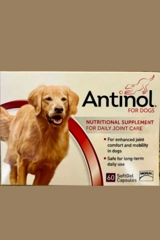 Antinol Daily Joint Care Supplement for Dogs 60 Softgels