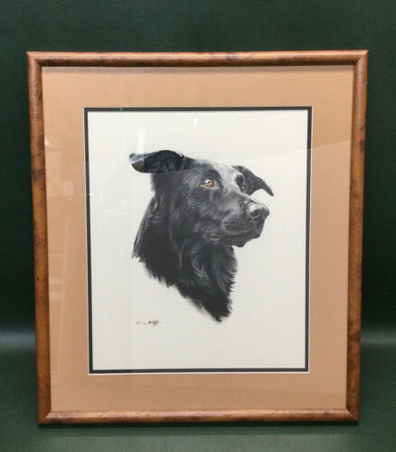 Anne Wolff Original Pastel Portrait Painting Animal Dog Art Black Dog ~ Framed