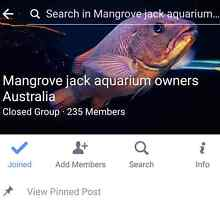 Hi guys,  who likes  keeping mangrove jack aquariums? Maxwelton Central West Area Preview