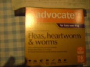 """Advocate"",Cats, Flea, Worm, Heartworm Treatments x 5 tubes.$45. Bonnells Bay Lake Macquarie Area Preview"