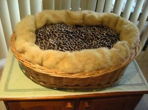 Elegant Cat basket, with extras. $30. Bonnells Bay Lake Macquarie Area Preview