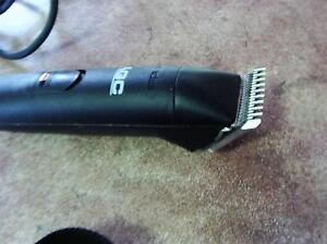 DOG HAIR CLIPPERS Southport Gold Coast City Preview