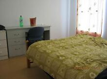 M/F 2 SHARE VERY CLEAN&QUIET NEW HOUSE5X2 F/F MEDIUM RM IN WILSON Wilson Canning Area Preview