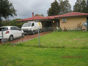 NEAT 4X2 FR $385PW IN GOSNELLS .HOMEWEST BOND OK,WALK 2 AMENITIES Gosnells Gosnells Area Preview