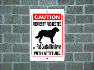 Property-protected-by-Flat-Coated-Retriever-dog-attitude-metal-aluminum-sign