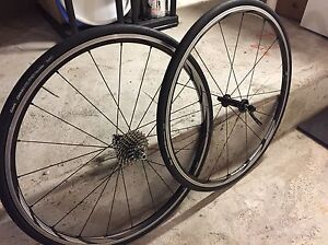 Roues Shimano RS61 - 11v Clincher