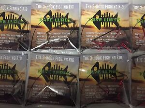 Proven 3 Hook Fishing Rig / Ice fishing / pike FREE Shipping