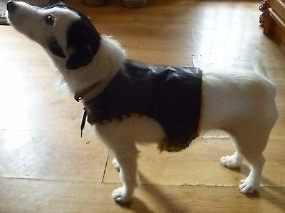 PVC AND FUR REVERSIBLE DOG COAT