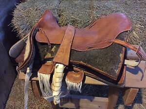 Chilean Saddle and bridle