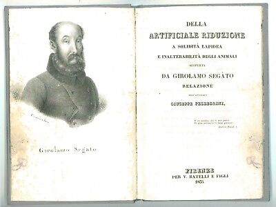 PELLEGRINI DELLA ARTIFICIALE RIDUZIONE A SOLIDITA' LAPIDEA ANIMALI G SEGATO 1835