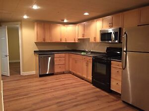 Great newly renovated basement suite