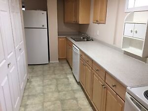 2 bedroom basement suite for rent.  Prince George British Columbia image 1