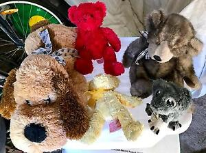 Soft toys Rutherford Maitland Area Preview