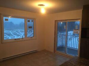 Logement 4 1/2 garage 24 par 30 rez-de-chaussée  Saguenay Saguenay-Lac-Saint-Jean image 6