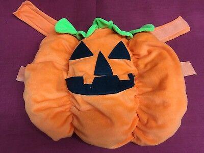 Tom's Toy International Dog Puppy Baby 1 Piece Halloween Pumpkin Costume