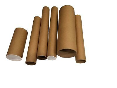 Kraft Mailingshipping Tubes With White End Caps 1.5 Wide X 12 Long 10 Pieces