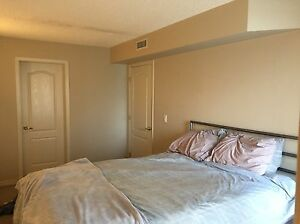 Room for rent downtown apartment/condo