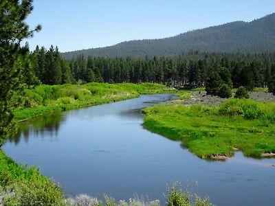 20.00 AC~OREGON LAND~NEAR CALIFORNIA~GORGEOUS RANCH~SYCAN RIVER~VIEWS~NO RES!!