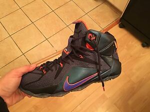 Nike Lebron James XII 12 shoes