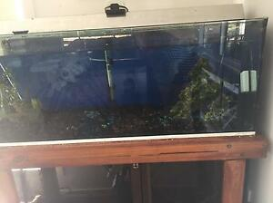 4ft fish tank, complete package Springfield Lakes Ipswich City Preview