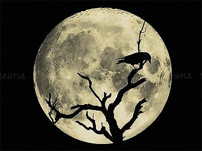 CROW SILHOUETTE MOON BLACK GREY PHOTO ART PRINT POSTER PICTURE BMP1006A ()