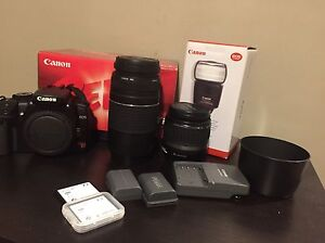 Brand new Canon with extra lens for profession photographers
