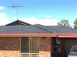 Roof painting and cleaning (fast free quote, good price ) Camden Camden Area Preview