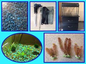 Aquarium équipée