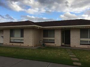 Unit for rent $285 Warradale Marion Area Preview