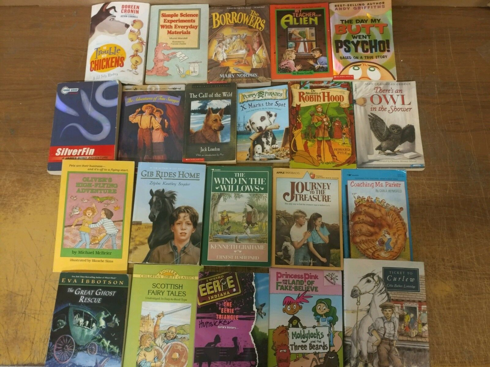 Lot of 20 Chapter Youth Early Readers Young Adults Children Book RL 3-4-5-6 MIX