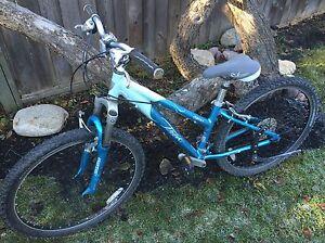 GREAT DEAL: Used Girl's Trek Bike