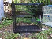 Rodent/Bird cage Kuranda Tablelands Preview